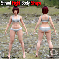 Street Fight Body Shape For G3F